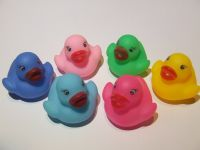 Ducks - Soap Embed