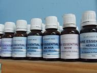 Aniseed Essential Oil - 15mL